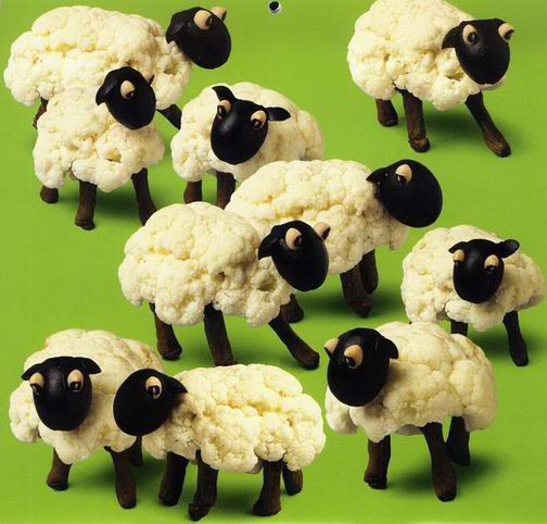 cauli-sheep.jpg
