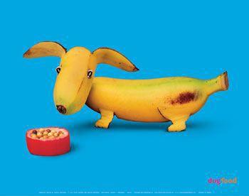 veggie-dog.jpg