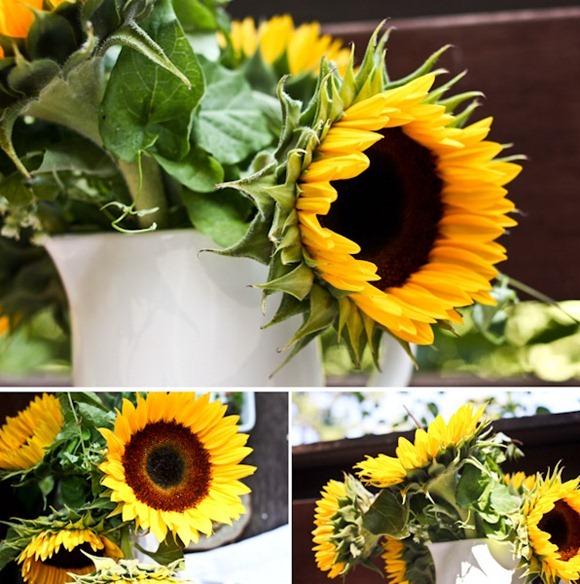 sunflowersBlog