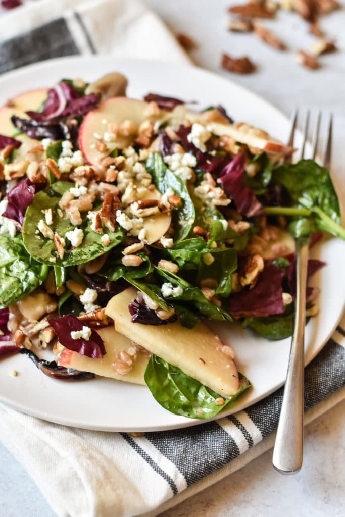 radicchio wheatberry salad on a plate with fork