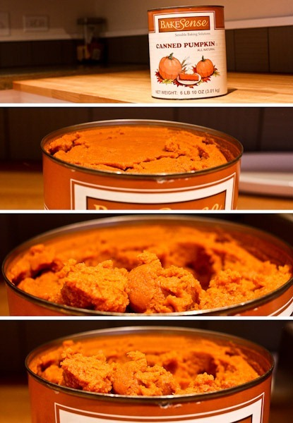 pumpkin-2Blog