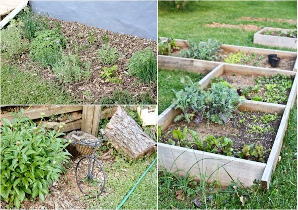 gardeniasBlog