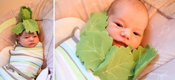 lettucebaby