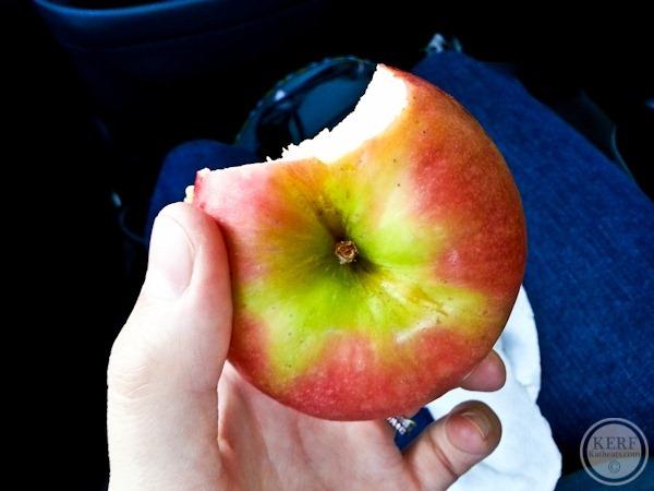 Foodblog-161648