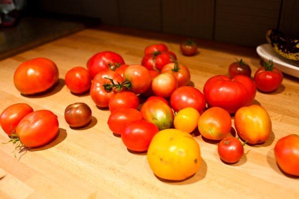 Foodblog-4373