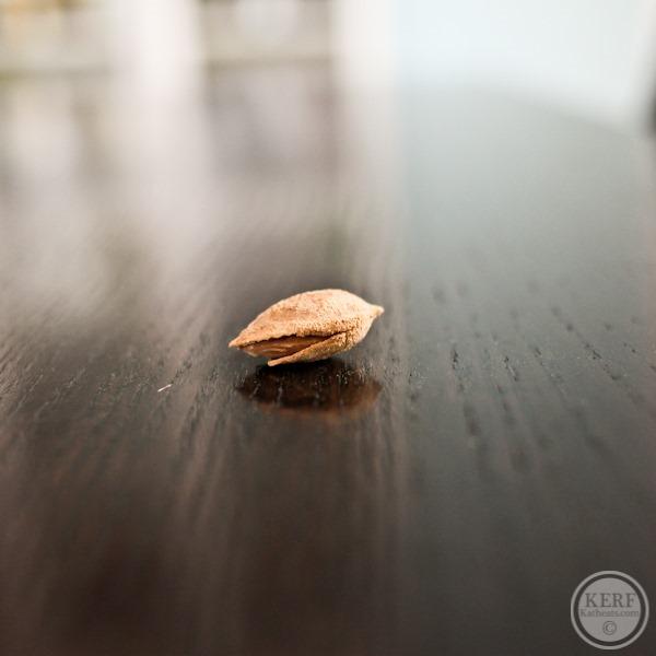 Foodblog-5404