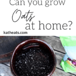 oats at home graphic
