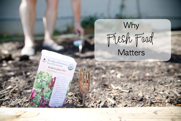 Why Fresh Food Matters