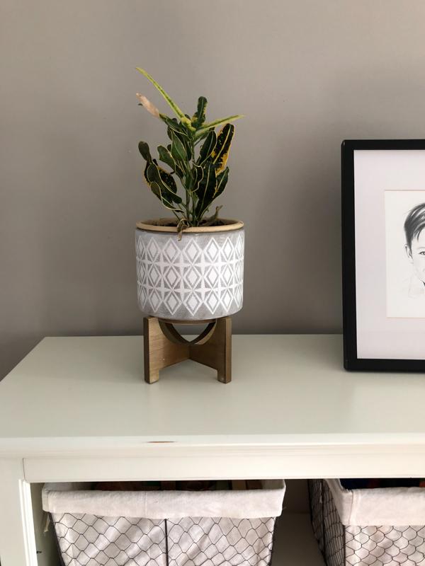 Minimalist Pots For House Plants