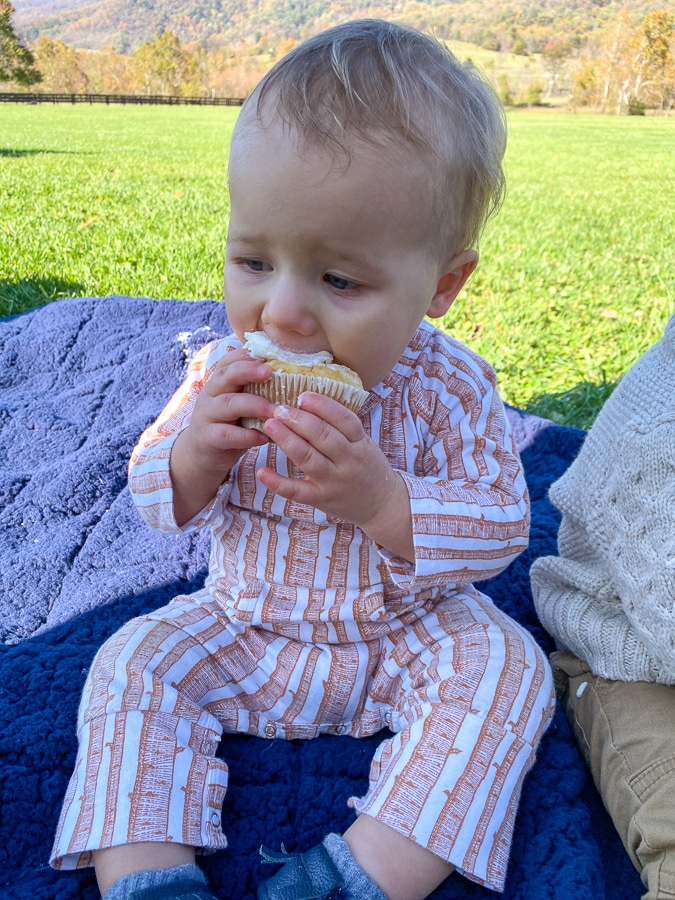 baby eating cupcake - first birthday at King Family Vineyards