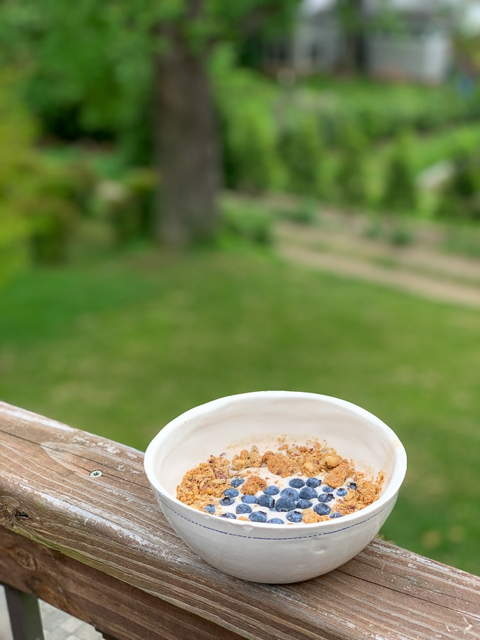 cereal with blueberries in white bowl with grassy background