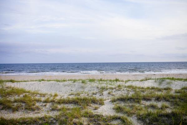 bald head sand dune
