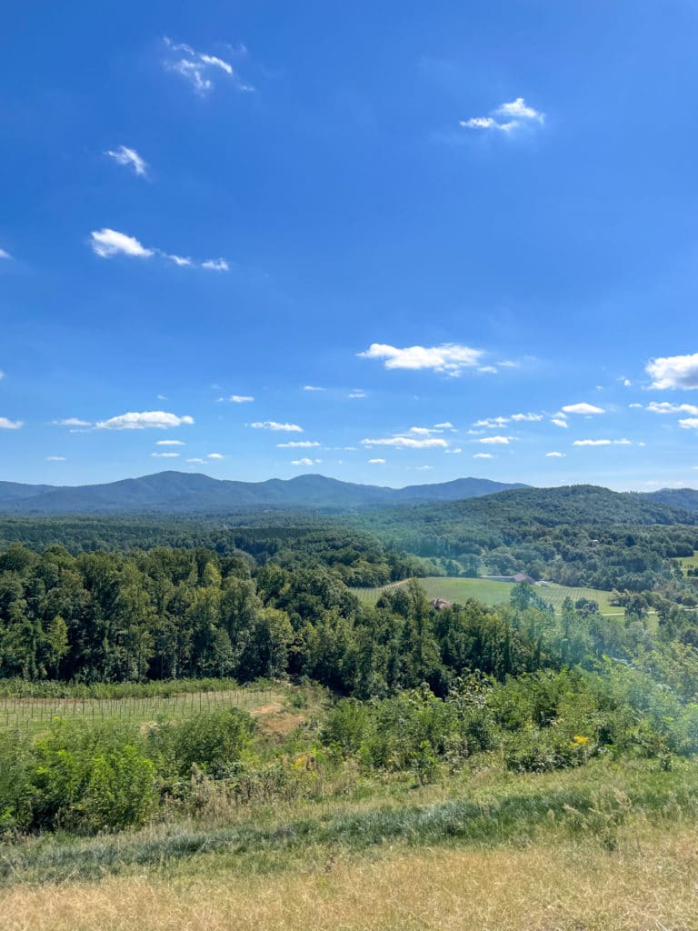 Hazy Mountain Vineyards & Brewery in Crozet | Whats New in KERF Land